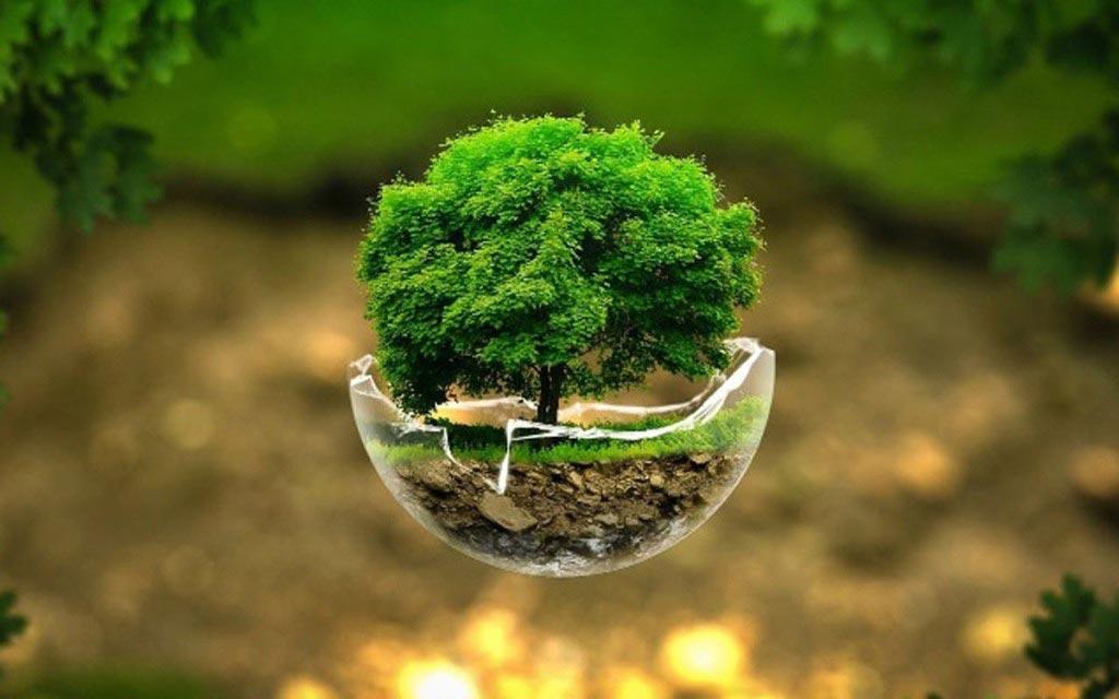 کارشناس رسمی دادگستری محیط زیست
